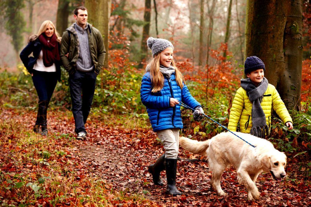 Family Walks, Rambling, Holiday Accommodation, Lambourn, Berkshire, UK