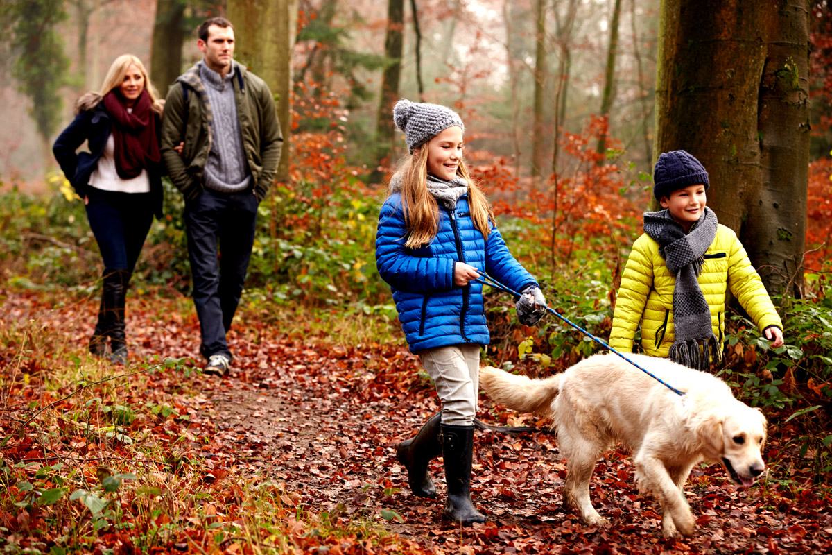 Family Walks, Rambling, Holiday Accommodation, Lambourn, Berkshire, UK